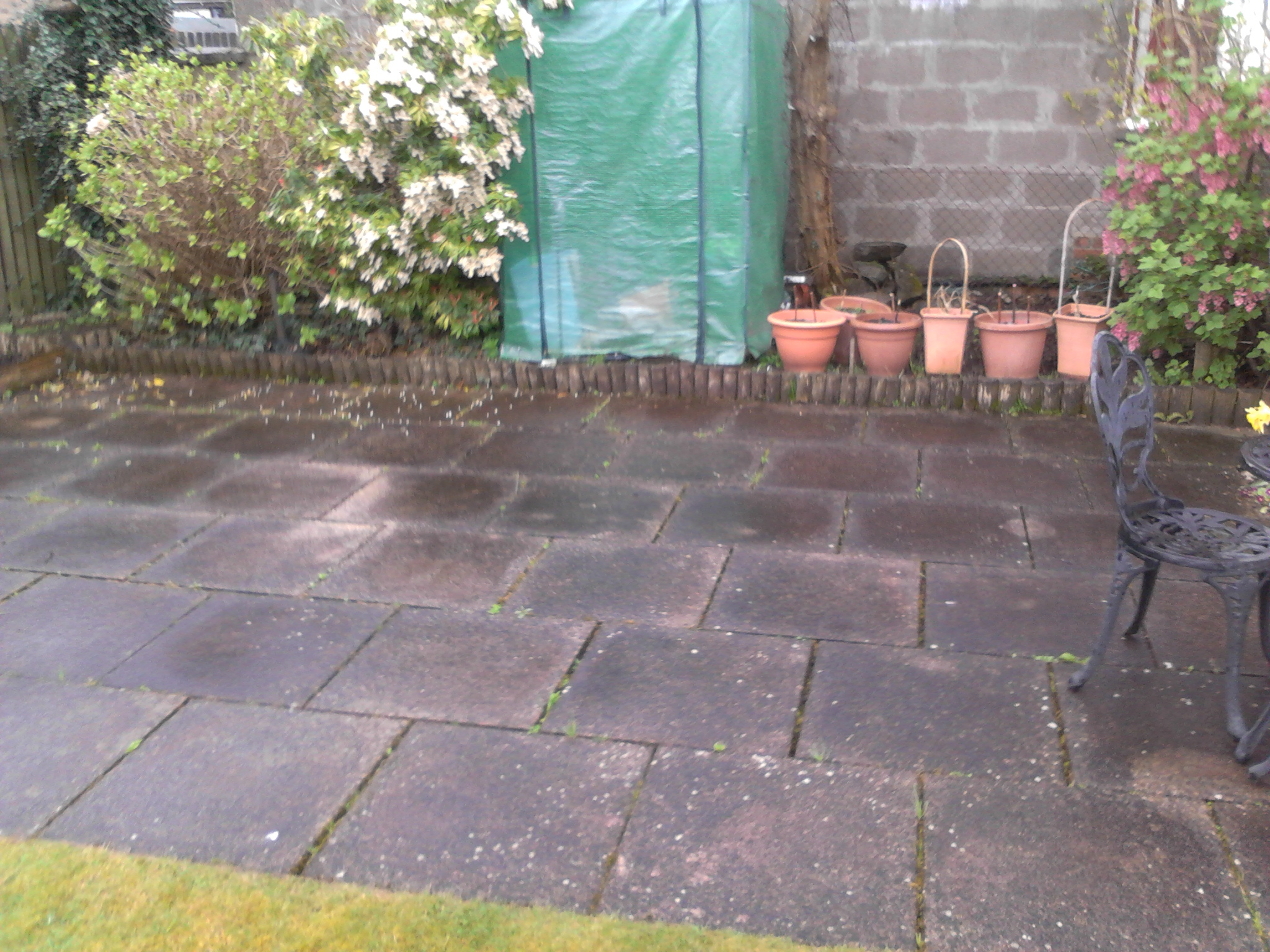 Patio, Cleaning, Thistle, Garden, Services, Johnstone